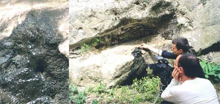 Evor + si affinité 2005 Fiac Tarn