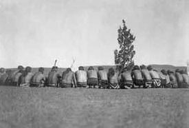 Culte-de-larbre-chez-les-amerindiens