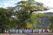 Papa-Lisa-arbre-rituel-du-retour-de-loubli